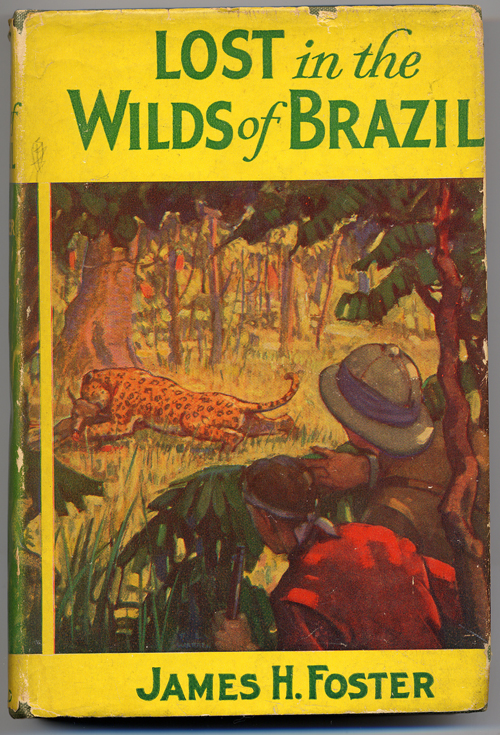 LOST IN THE WILDS OF BRAZIL. James Foster.