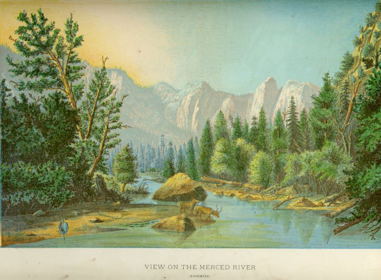 View on the Merced River (Yosemite). ANONYMOUS.