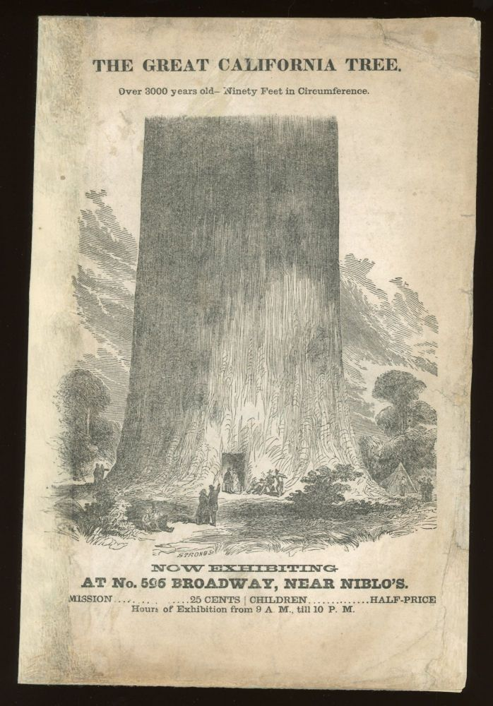 Description of the great tree recently felled upon the Sierra Nevada, California, now placed for public exhibition, in the spacious Racket Court of the Union Club, No. 596 Broadway, adjoining the Metropolitan Hotel, New-York. DESCRIPTION OF THE GREAT TREE.