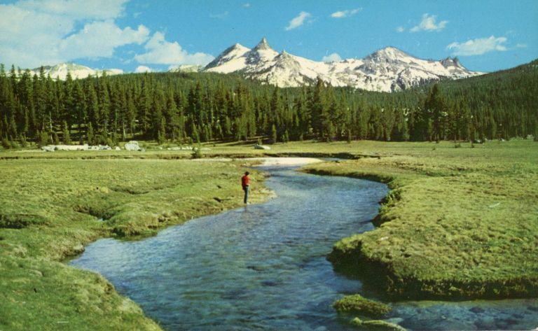 [Yosemite High Sierra] Yosemite National Park, California, Tuolumne Meadows, in the high Sierra, with view of the Cathedral Range. DANA CLARK MORGENSON.