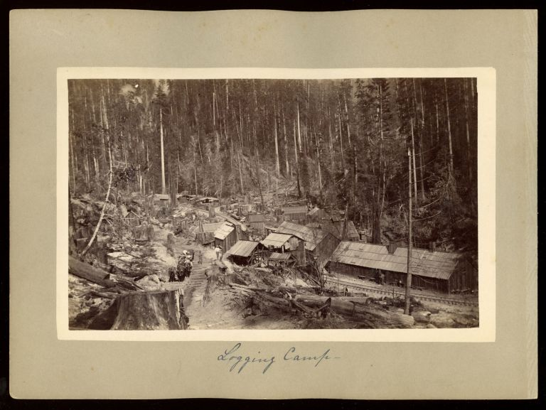 """[Humboldt County] """"Logging camp"""" [with] """"Blue Lake Hotel."""" Albumen prints. ANONYMOUS PHOTOGRAPHER."""