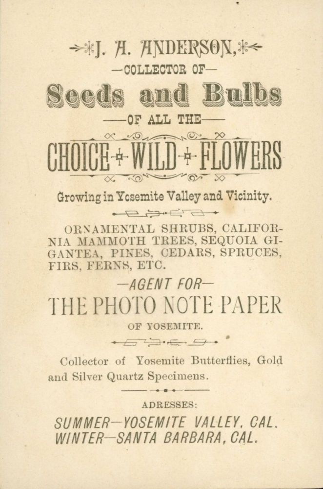J. A. Anderson, collector of seeds and bulbs of all the choice wild flowers growing in Yosemite Valley and vicinity. Ornamental shrubs, California mammoth trees, Sequoia gigantea, pines, cedars, spruces, firs, ferns, etc. Agent for photo note paper of Yosemite. Collector of Yosemite butterflies, gold and silver quartz specimens. Address: summer --- Yosemite Valley, Cal. Winter -- Santa Barbara, Cal. Trade card, J. A. ANDERSON.