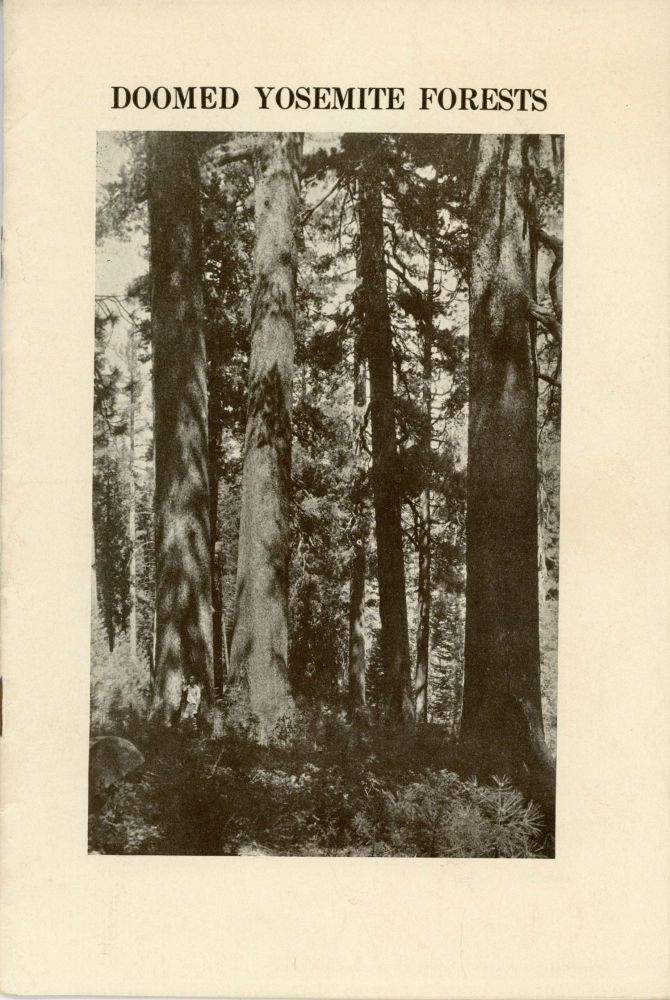 The doomed Yosemite sugar pines. The important problem of saving what is left of the famous sugar pine forests of the Yosemite still unsolved. The best known part of the region, familiar to hundreds of thousands of tourists, still in control of the lumbermen and menaced with destruction [caption title]. EMERGENCY CONSERVATION COMMITTEE.
