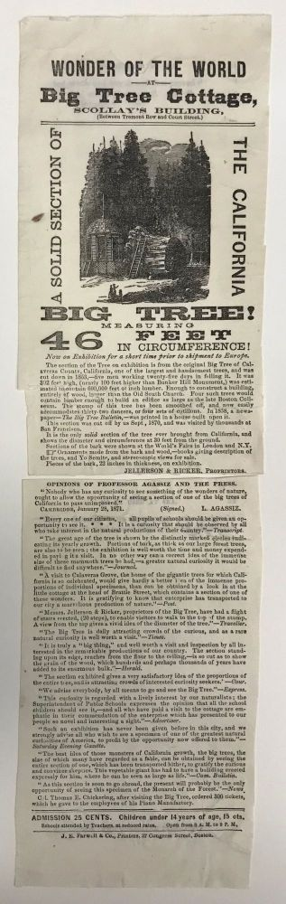 Wonder of the world at Big Tree Cottage, Scollay's Building, (between Tremont Row and Court Street.) A solid section of the California big tree! Measuring 46 feet in circumference! Now on exhibition for a short time prior to shipment to Europe. JELLERSON, PROPRIETORS RICKER.