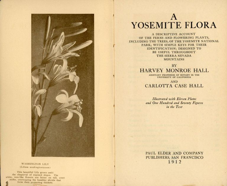 A Yosemite flora[.] A descriptive account of the ferns and flowering plants, including the trees, of the Yosemite National Park; with simple keys for their identification; designed to be useful throughout the Sierra Nevada mountains by Harvey Monroe Hall[,] Assistant Professor of Botany in the University of California[,] and Carlotta Case Hall[.] Illustrated with eleven plates and one hundred and seventy figures in the text. HARVEY MONROE HALL, CARLOTTA CASE HALL.