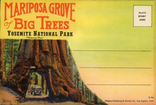Mariposa Grove of big trees Yosemite National Park ... [envelope title]. WESTERN PUBLISHING AND...