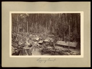 "Humboldt County] ""Logging camp"" [with] ""Blue Lake Hotel."" Albumen prints. ANONYMOUS PHOTOGRAPHER"