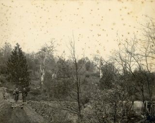 FOUR GELATIN SILVER PRINTS OF MINES IN GRASS VALLEY, CALIFORNIA.