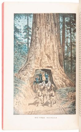 Beauties of California copyright 1883, by N. W. Griswold. Views and descriptions of Yosemite Valley, big trees, geysers, Lake Tahoe, Donner Lake, San Francisco, '49 & '83, Los Angeles, and towns, orange groves and vineyards of Southern California.