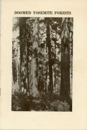 The doomed Yosemite sugar pines. The important problem of saving what is left of the famous sugar...