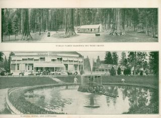 Yosemite Valley and Mariposa Grove of Big Trees[.] Yosemite Stage & Turnpike Co. [cover title].