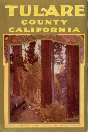 Tulare County California by M. B. Levick[.] California lands for wealth California fruit for health.