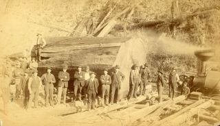 TWO PHOTOGRAPHS OF LUMBERJACKS AND LUMBERING, PROBABLY IN NORTHERN CALIFORNIA: LUMBERJACKS POSING WITH THEIR EQUIPMENT IN FRONT OF A TREE THEY ARE FELLING and A LARGE GROUP OF MEN POSING IN FRONT OF A LARGE LOG AND A STEAM DONKEY [titles supplied]. Albumen prints.